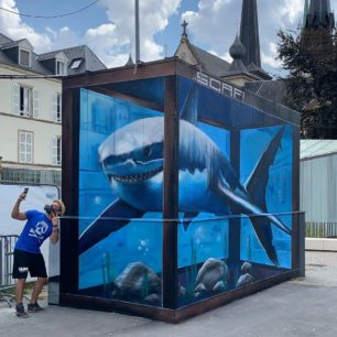 SCAF   Mural   Luxembourg   2020